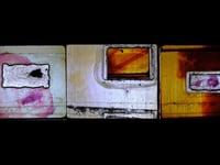 """""""Mechanoreceptors 1-3"""" installation excerpt"""
