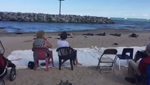 A Study in Rhyme & Song at 6018 North's Water Music on the Beach 2016 curated by Tricia Van Eck. Video documentation by Michael Solomon and Tina Smith.